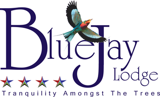 Blue Jay Lodge Retina Logo